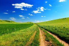 Road in meadow stock photography
