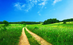 Road through meadow Stock Photography