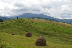 The road through the meadow with haystacks. Stock Photos