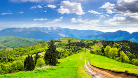 Road through the meadow on hillside Stock Images