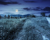Road through the meadow on hillside at night Royalty Free Stock Images