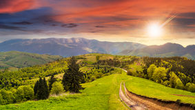 Road through the meadow on hillside at sunset Royalty Free Stock Photo