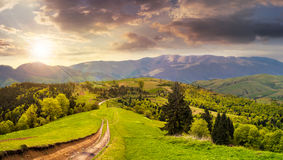 Road through the meadow on hillside at sunset Royalty Free Stock Photography