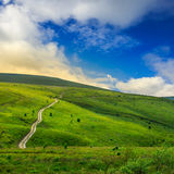 Road through a meadow on the hillside Royalty Free Stock Photography