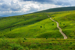Road through a meadow on the hillside Stock Image