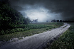 Road on through the meadow near few trees and foggy Stock Images