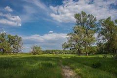 Road through a meadow near a river Stock Photos