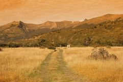 Road on the meadow. Royalty Free Stock Image