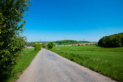 Road and  meadow with trees against the blue sky Stock Photos