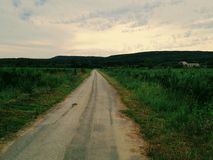 Road. In the middle of a field in the countryside Royalty Free Stock Photo