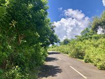 Road in the middle of forest to views of sea seen from the top of hill. It is very beautiful. royalty free stock image