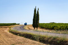 A road in the middle of the vineyards in the south of France Royalty Free Stock Photo