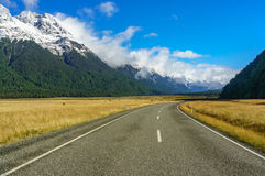 Road in the Milford Sound. New Zealand royalty free stock images