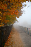 Road in the misty autumn Park Royalty Free Stock Photography