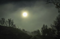 Road in the misty forest. Mistic road in the dark misty forest with full moon on the sky , halloween background Stock Image