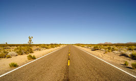 On the road of mojave national park Stock Image