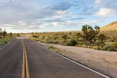 On the road in Mojave National Preserve. Alone on the road in Mojave National Preserve among the trees of Joshua stock images