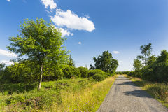 Road Through Moor Landscape In The High Fens, Belgium Royalty Free Stock Photo