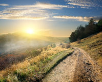 Road in the morning Royalty Free Stock Photo