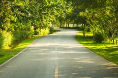 The road the morning Royalty Free Stock Image