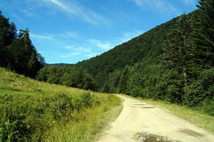 Road in a mountain forest near a green glade Royalty Free Stock Photography