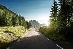 Road in mountain, Lofoteb iskands, Norway Royalty Free Stock Photo