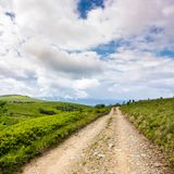 Road through mountain meadows. Beautiful landscape of Polonina Runa ridge on a cloudy summer day Royalty Free Stock Images