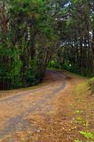 A road in the mountain. A old road in the mountain stock photography
