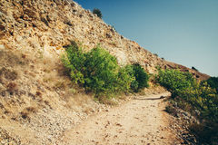 Road in mountain. Perspective road in mountain. Summer time Royalty Free Stock Photography