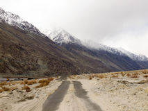Road in mountain range Stock Images