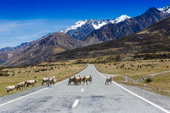 Road in mountain range Stock Image