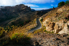 Road with mountain in sunset on Tenerife Royalty Free Stock Photography