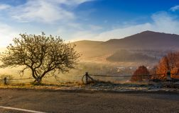 Road through mountainous countryside at sunrise. Beautiful foggy autumn scenery Royalty Free Stock Images