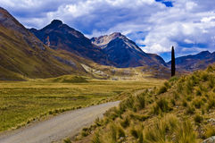 Road in mountainous landscape Royalty Free Stock Images