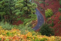 Road in mountains. High angle view of road through forested mountains Stock Images