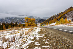 Road mountains asphalt autumn snow Royalty Free Stock Photos
