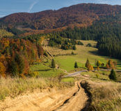 Road in the mountains in autumn forest Royalty Free Stock Photography