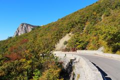Road in the mountains in the autumn stock photography