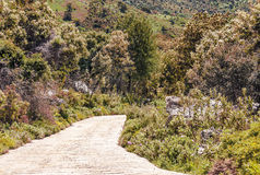 Road in the mountains of Cadiz Stock Photo