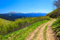 Road in the mountains Royalty Free Stock Photo