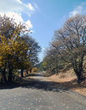 The road into the mountains. Road distance route way hill mountain clouds sky blue  autumn downhill Crimea landscape way tree warm sunny weather yellow Royalty Free Stock Image