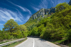 Road into the mountains Stock Images