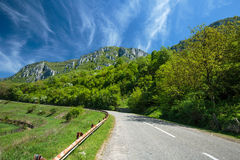 Road into the mountains Stock Photography