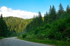 Road in the mountains. Stock Photography