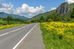 Road mountains sky asphalt flowers Royalty Free Stock Images