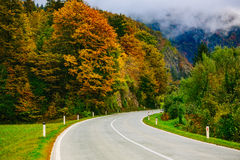 Road in the mountains, Slovenia, Bled,Bohinj.Scenic view of the colorful autumnal forests and hills. Royalty Free Stock Photography