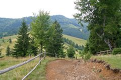Road in the mountains in summer, Carpathians Ukraine royalty free stock photography