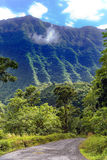 The road in mountains. Tropical nature.Tahiti. Stock Photography