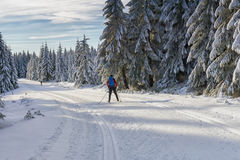 Road in mountains at winter in sunny day. Trees covered with hoarfrost illuminated by the sun. Groomed ski trails for cross-country in Karkonosze, Giant Stock Photography