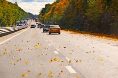 Road with moving cars, surrounded by autumn trees and yellow leaves flying to asphalt. Royalty Free Stock Photo